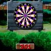 301-dart