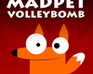 madpet-volleybomb
