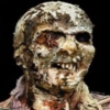 sl-zombie-shotz