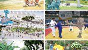 pokemon-go-rio-olympics-3