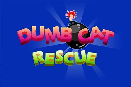 Dumb Cat Rescue