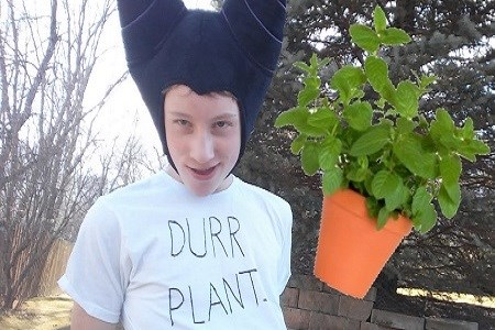 Durr Plant - the game